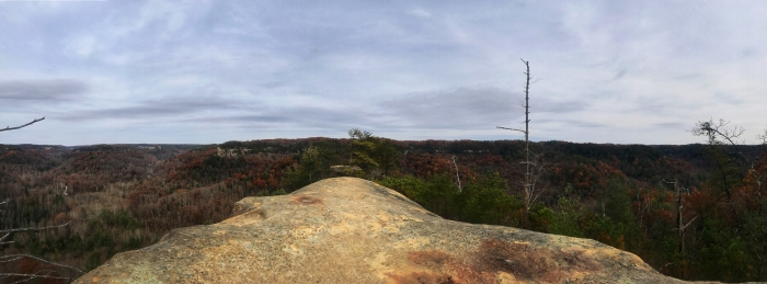 Hanson's Point – Red River Gorge