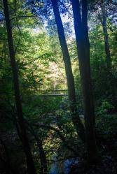 cumberland falls-1-8