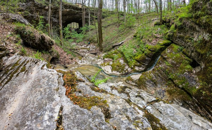 Three Bridges Trail